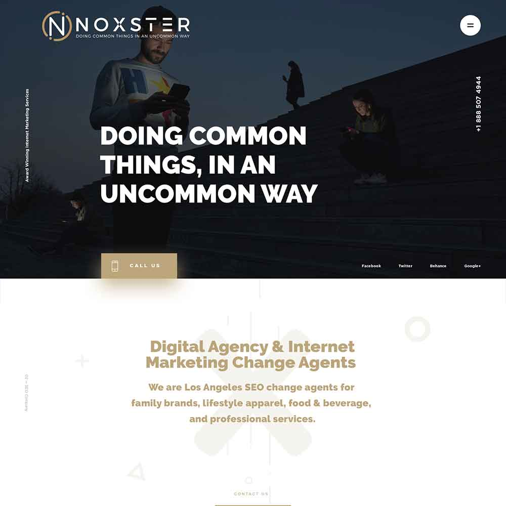 Noxster Web Development using Divi